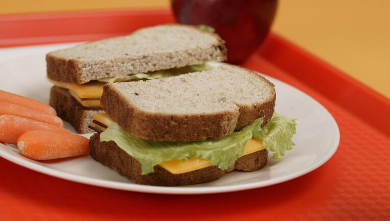 ダイエット中のお昼ご飯は今までの半分が理想的!